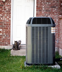 outside unit of an air conditioner next to brick house with cats in background